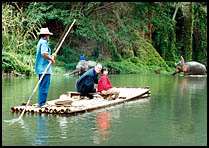 Floating through the forest on a bamboo raft