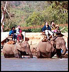 Riding on elephant back to visit tribal villages